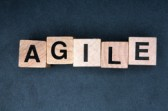 blog-post-img-131030-168x111 Agile Adoption by Enterprises is Ramping Up Agile