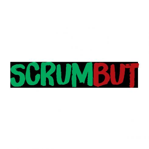 scrumbut-intland-software