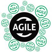 Dark-Agile-Manifesto-Anti-Agile-Manifesto-Intland-Software-168x168 Registration Confirmed